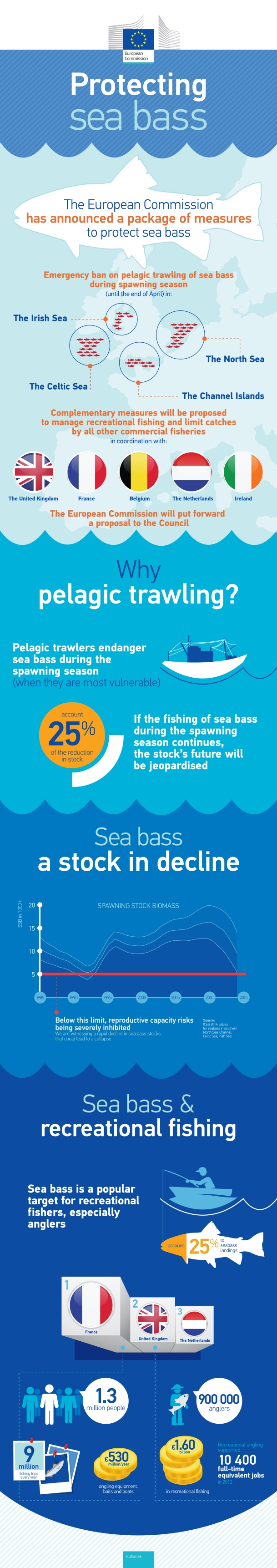 Infograph detailing the current situation regarding sea bass fishing - European Commission.