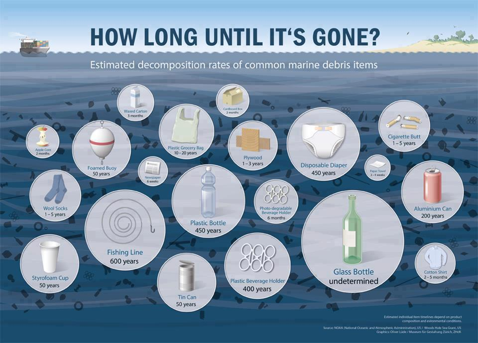 Source : NOAA - National Oceanic and Atmospheric Administration